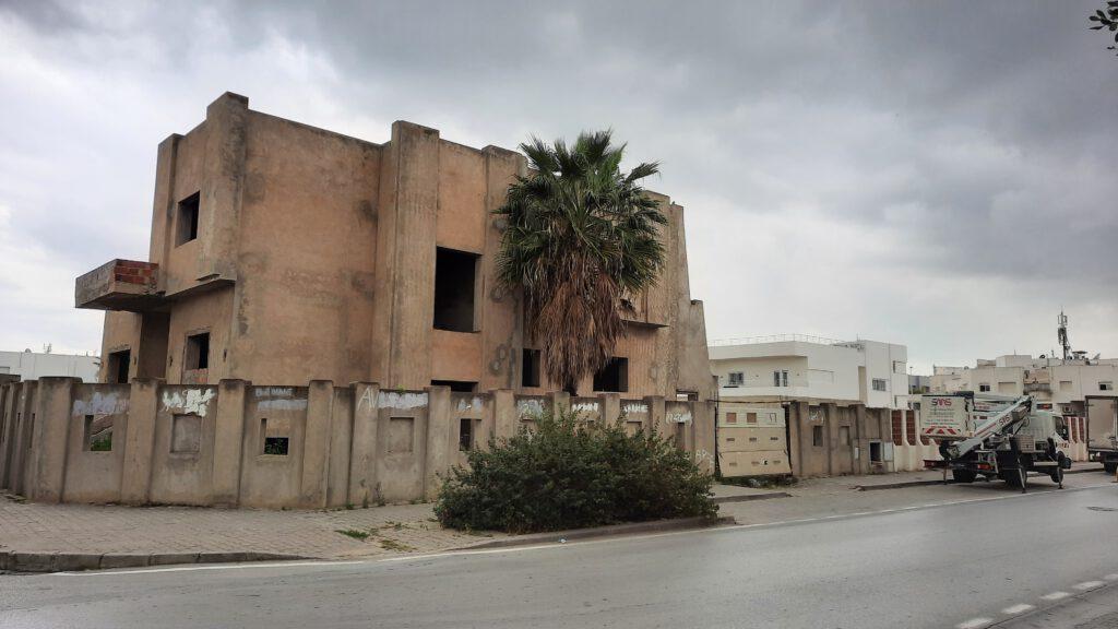 Palme an Ruine